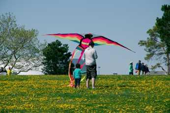 20170521_1553_Kite_Festival