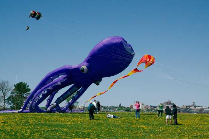 20170521_1554_Kite_Festival