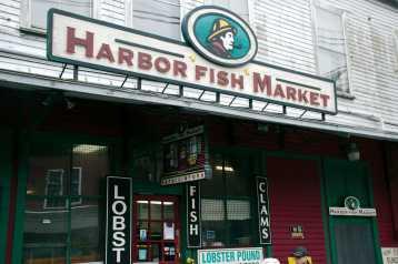 20170526_1675_Harbor_Fish