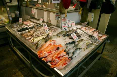 20170526_1681_Harbor_Fish